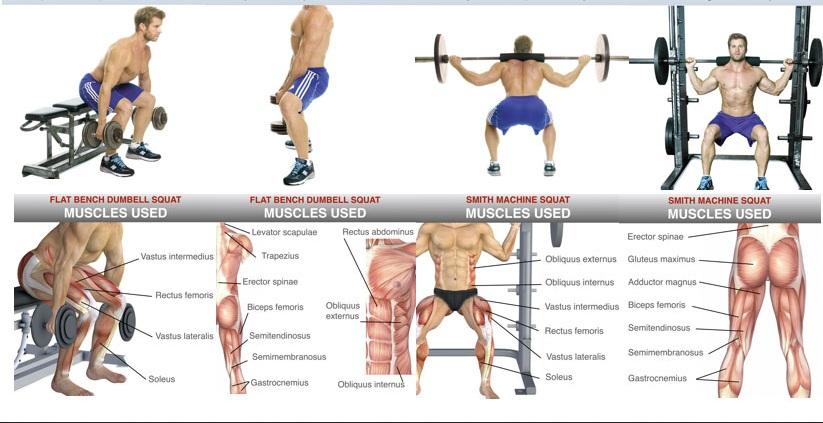 building leg muscles